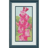 Gladiola / Home&Craft